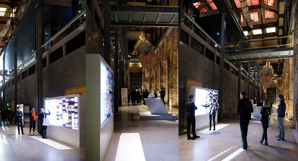 museum - orange18.jpg